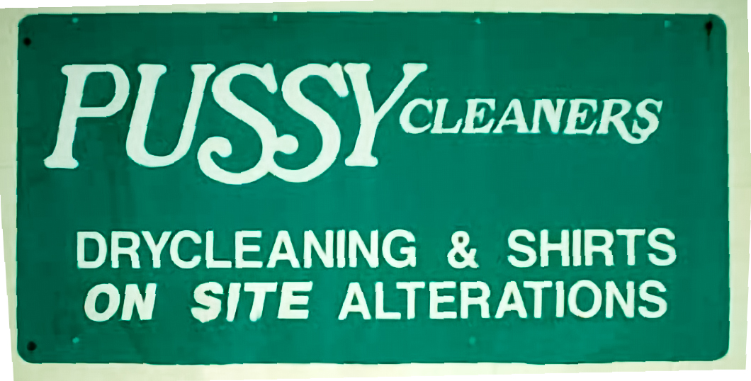 10 bad store names Pussy Cleaners