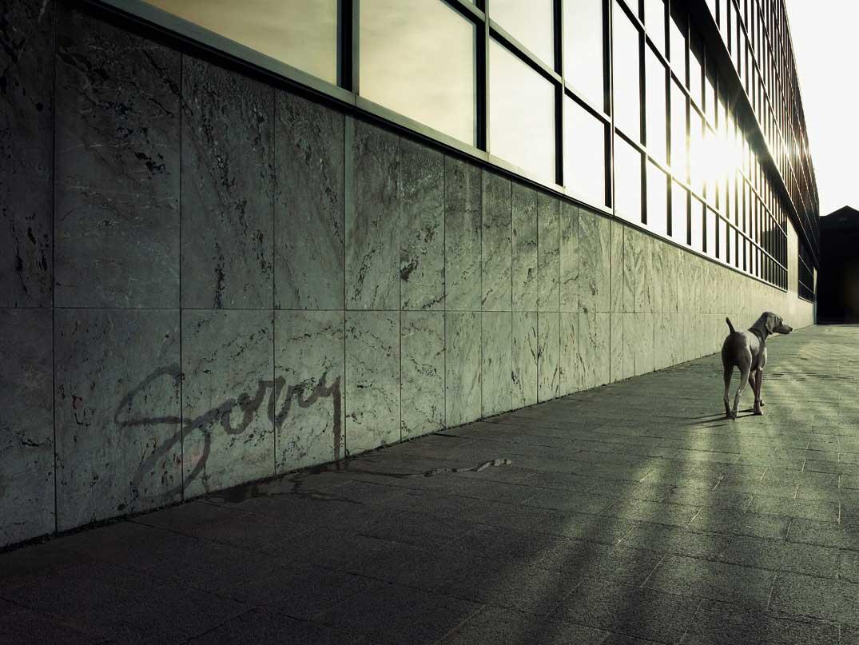 The work of Belgian photographer/digital artist Koen Demuynck 12