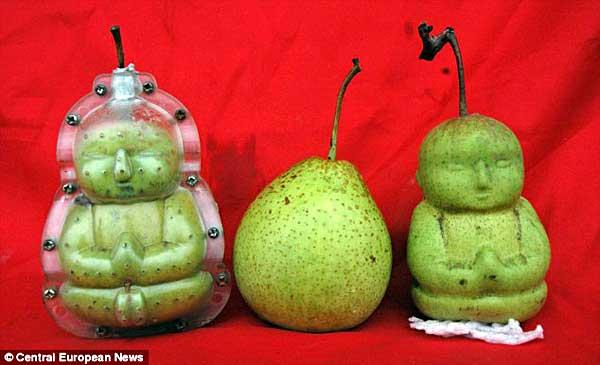 BuddhaPears2