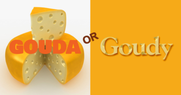 Is it a Cheese or a Typeface?