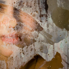 Selection of Alyssa Monks Photorealistic Paintings