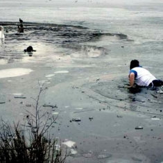 Puppies and Flowers : Man rescues his dog from frozen lake