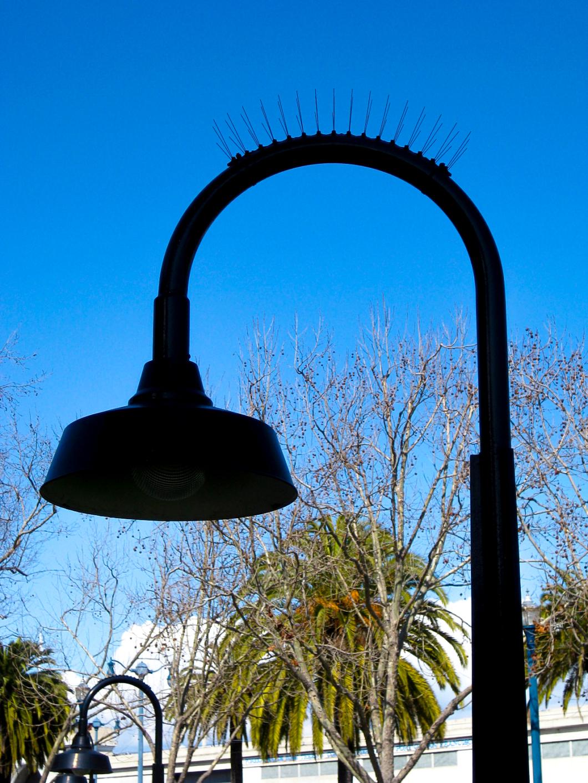 SF Street Light Mohawk Full Image, San Francisco Mohawks