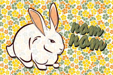 rabbit-1012595