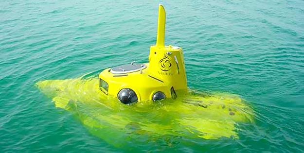 Microsoft's Paul Allen's $12 Million Yellow Submarine