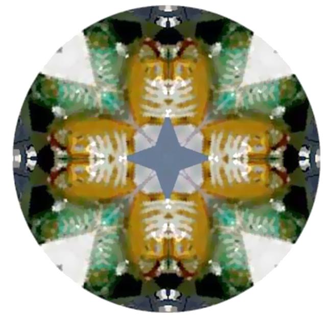 Kaleidoscope any URL