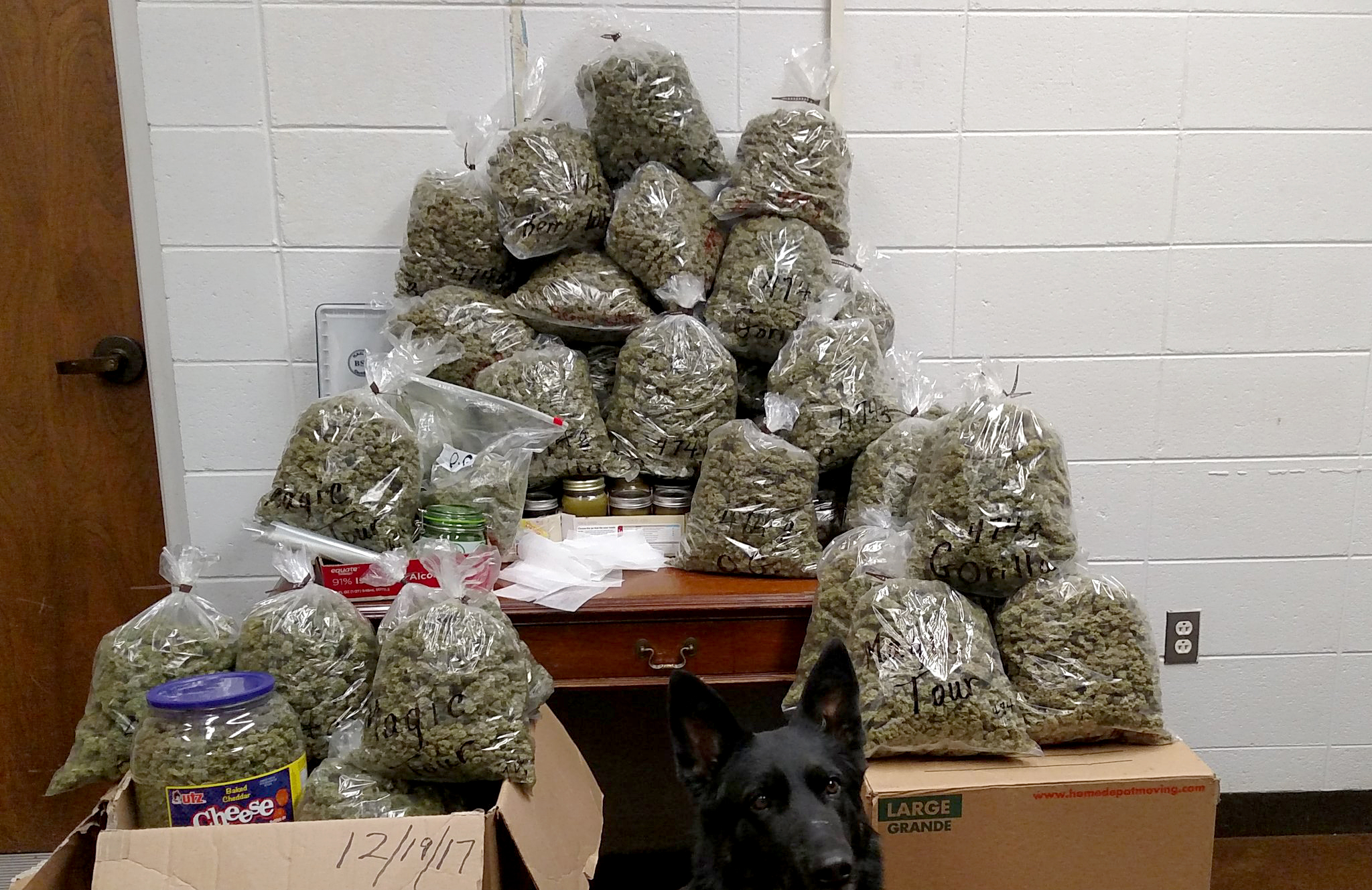 60 Pounds of Weed