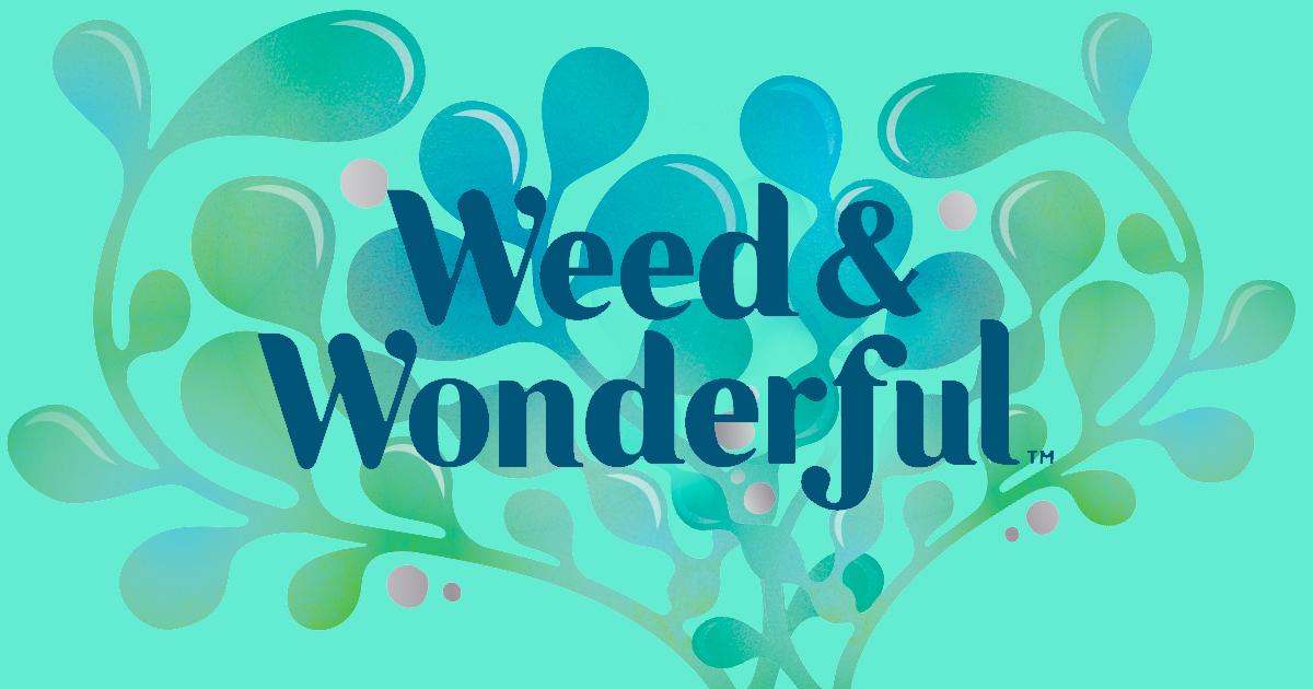 Weed & Wonderful Packaging Design