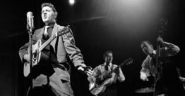 Elvis-Ambient-sounds