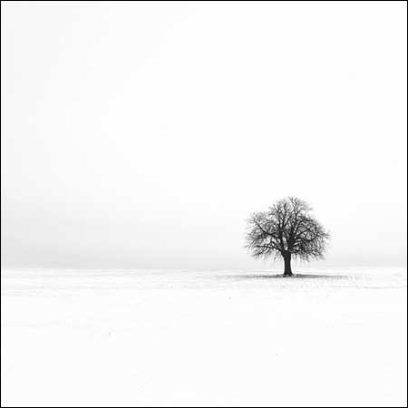 The Photography of Sébastien Grébille