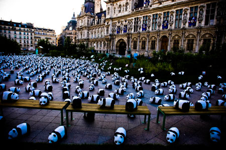 Puppies and Flowers : 1600 Pandas at The Hotel De Ville in Paris